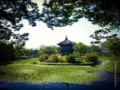 untitled, june/2016 (niko.pearson) Tags: travel summer green royal palace korea serene southkorea fareast royalty eastasia