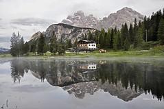 _Incantesimo (stefano.chiarato) Tags: mirror specchio acqua dolomiti reflections veneto italy montagne