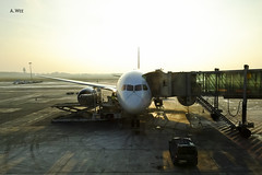 LOT 787 (A. Wee) Tags: airport lot poland warsaw chopin boeing 787  dreamliner  lotpolish