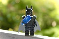 The Bat-popsicle (GianlucaStefanini) Tags: summer macro dark fun dc comic lego bat super batman knight heroes minifig dccomics popsicle minifigure