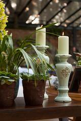IMG_0568_Julia_Ribeiro (marianabassi) Tags: fazenda rstico lounge aparador composio verde folhagem azul cermica pedra suculenta vela