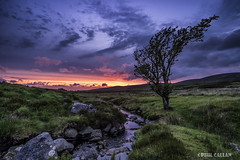 Solstice sunset at Sally's Gap (isitaboutabicycle) Tags: sunset irish landscape solstice wicklow sallygap sallysgap xt10 tpsouting samyang12mmf20ncs