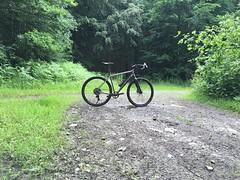 IMG_8361 (Fred10195) Tags: camino sonder sonderbikes