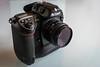 Nikon D2xs (Guigue's) Tags: nikon d2xs