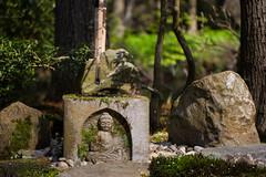 clingendael-7802 (Arie van Tilborg) Tags: japanesegarden hague thehague clingendael japansetuin clingendaelestate landgoedclingendael arievantilborg