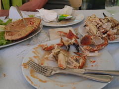 Lunch @ Nazar (after) (rgrant_97) Tags: food fish portugal peixe seafood marisco adega oceano nazar