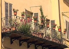 Spoleto, il balconcino (Ska * mon) Tags: flowers windows window finestra fiori spoleto palazzo piante umbria terrazzo balcone finestre vasi fiorito scorci balconcino terrazzino