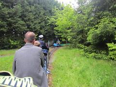 IMG_1144 (demu1037) Tags: miniature railway 1025 firefly kerrs birchley