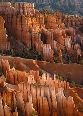 Bryce Canyon National Park (Jeremy Duguid) Tags: park travel trees mountains nature canon landscape utah ut horizon jeremy canyon national hoodoo bryce 1000 hoodoos duguid jeremyduguid