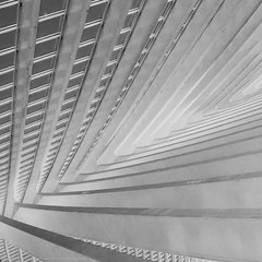 Square architecture study #2 (Michael Echteld) Tags: city blackandwhite bw abstract monochrome lines train square mono michael pattern belgium belgie trainstation liege hdr luik santiagocalatrava exposureblending photomatix guillemins selection1 ligeguillemins echteld sonya700 sonyalpha700 michaelechteld wpo11