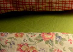 52 Weeks of Bedding Changes (34) (Renee Rendler-Kaplan) Tags: summer floral canon bedroom gbrearview flat sunday august boudoir change series 34 gapersblock solid wbez checks chicagoist fitted ourbed 2013 reneerendlerkaplan changeyoursheets canonpowershotsx40hs 52weeksofbeddingchanges