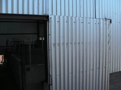 SANY5632