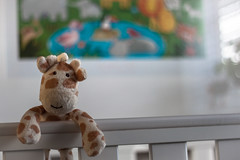 The Final Count Down (Robert Michael Parker) Tags: baby toys waiting nursery excited games newborn giraffe cot