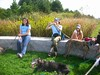 DeerIsland09-25-2011011