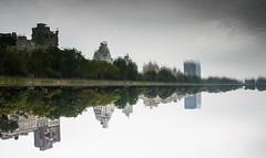 central park lake upside down (jajajavi75) Tags: nyc newyorkcity newyork centralpark
