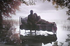 (Gerald Larocque ) Tags: sky fall love halloween water beautiful leaves fog bed october