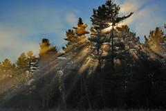 Cool Rays (Padrone) Tags: sun fog rays charlestonlake neutraldensity