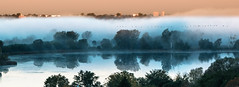 Geese in the morning mist (Iris v L) Tags: mist nature fog sunrise dawn geese sony ngc ringexcellence greaterphotographers dblringexcellence tplringexcellence photographyforrecreationeliteclub eltringexcellence celebritiesofphotographyforrecreation