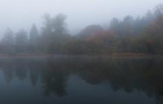 Cerknica Lake (happy.apple) Tags: autumn reflection fall fog landscape geotagged slovenia slovenija jesen jutro megla cerknicalake cerkniškojezero