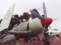 """Sea Fury (3) • <a style=""""font-size:0.8em;"""" href=""""http://www.flickr.com/photos/81723459@N04/11418074523/"""" target=""""_blank"""">View on Flickr</a>"""