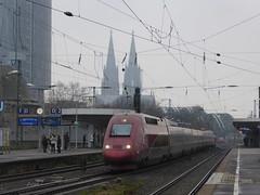 Thalys in Kln-Deutz (travel.nici) Tags: train germany deutschland eisenbahn railway zug kln nrw bahn trein thalys bahnhofklnmessedeutz