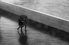 rainy thames walk #1 (Michael Moeller) Tags: street bw london monochrome streetphotography monochrom regen streetpeople streetphotographer