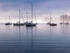 Misty Morning on Pelican Bay (TonyinAus) Tags: morning water weather fog boats australia newsouthwales sailboats
