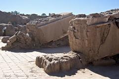 ستونهای مسجد جامع ارگ (Daily Frames by Fera-) Tags: bam بم bamcitadel ارگبم