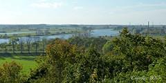 Gezicht op de Rijn vanaf de Wageningse berg. - View on the river Rhine. (Cajaflez) Tags: autumn trees river bomen view herbst herfst rivière arbres uitzicht fluss rhine bäume vue ansicht rivier autun derijn