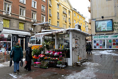 Flower seller (Francisco Anzola) Tags: winter cold sofia snowy bulgaria vendor balkans