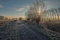 On a cold winter morning at the Bruges wetlands (Roland B43) Tags: winter landscape belgium brugge wetlands bruges frozenfields assebroeksemeersen