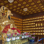 "Hundred Buddha room<a href=""http://www.flickr.com/photos/28211982@N07/16502365562/"" target=""_blank"">View on Flickr</a>"