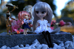 Show And Tell (dreamdust2022) Tags: baby cute love girl loving angel dark happy sadness robot pain hug doll pretty princess little sweet joy adorable evil lonely pullip playful tender littlepullip suigintou sweetiepiestrawberries