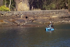Kayaking at The Royal National Park 1 (everyday sh_ter) Tags: park beach forest sydney waterfalls kookaburra wattamolla garie royalnationalpark audley stanwell hackerriver