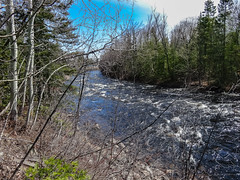 IMPETUOSITY -Spring flood waters (BLEUnord) Tags: nature water landscape spring eau flood rivire april paysage avril printemps saguenay chicoutimi crue