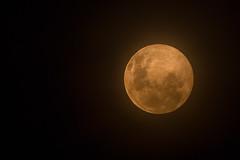Smoky Full Moon (RoosterMan64) Tags: closeup canon smoke au australia fullmoon newsouthwales castlehill