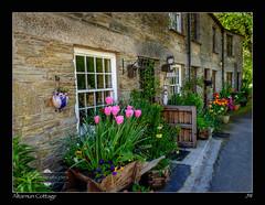 Altarnun Cottage (jeremy willcocks) Tags: uk flowers colour landscape cornwall village cottage altarnun jeremywillcocks xf1024 fujixt10 wwwsouthwestscenesmeuk