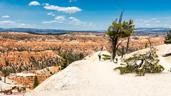 Bryce Point - Bryce Canyon National Park (mikerhicks) Tags: travel arizona usa southwest nature landscape geotagged outdoors photography utah spring unitedstates desert hiking adventure event backpacking bryce brycecanyon marblecanyon brycecanyonnationalpark brycepoint onemile geo:country=unitedstates geo:state=utah camera:make=canon exif:make=canon exif:focallength=18mm exif:aperture=90 geo:city=bryce exif:lens=1835mm exif:isospeed=100 canoneos7dmkii camera:model=canoneos7dmarkii exif:model=canoneos7dmarkii sigma1835f18dchsma geo:lat=3760409167 geo:lon=11215546333 geo:lat=37604091666667 geo:lon=11215546333333 geo:location=brycecanyon