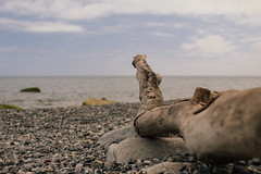 Ostseeurlaub (Margot in Love) Tags: ocean sea deutschland meer balticsea ostsee mecklenburgvorpommern sassnitz