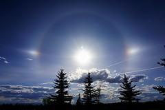 P365_125_Stellar (Christian Saunders) Tags: sky sundog project365