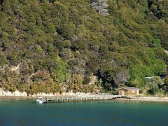Shed with Jetty (mikecogh) Tags: private bush jetty shed shore secluded curiouscove