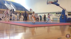stefanou_15_5_2016_knockdown_3414