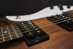 Guitar Detail #4 (Stueyman) Tags: sony a6000 24mm za zeiss guitar detail pickguard ibanez pickup humbucker frets rosewood