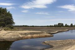 T2-Pool Landscape 2 (Bugbait of Seney) Tags: landscape michigan dry upperpeninsula beaverlodge drained snwr seneynationalwildliferefuge t2pool