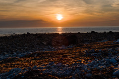 Sunset in Pubnico, NS (mdentremont) Tags: novascotia nikon sunset nature water d5500 oceanscape sea seaweed atlantic ocean sun sky seascape rocks outdoor marine pubnico middlewestpubnico canada ca