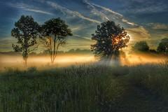 Burton Wetlands (kevincarlvail) Tags: park ohio sun fog sunrise foggy burton geauga geaugacounty burtonwetland