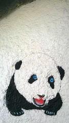 Cute baby Panda (seanwalsh4) Tags: baby cute bristol stencil panda