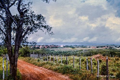 """The Road to Glória"""