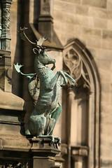 Bronze Fallow Deer (Derbyshire Harrier) Tags: city summer sculpture bronze scotland edinburgh capital parliamentsquare stgilescathedral 2016 fallowbuck