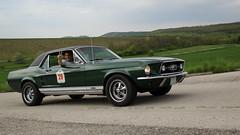 1967 Ford Mustang 390 GTA (Dorka Bus) Tags: classic ford vintage hungary 1967 oldtimer mustang gta hungaria 390 villapark